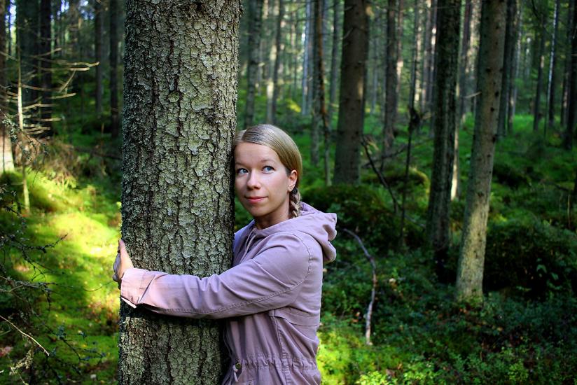 Kimmo Kauppi, Metsie-keruun kokoelma, Lusto.